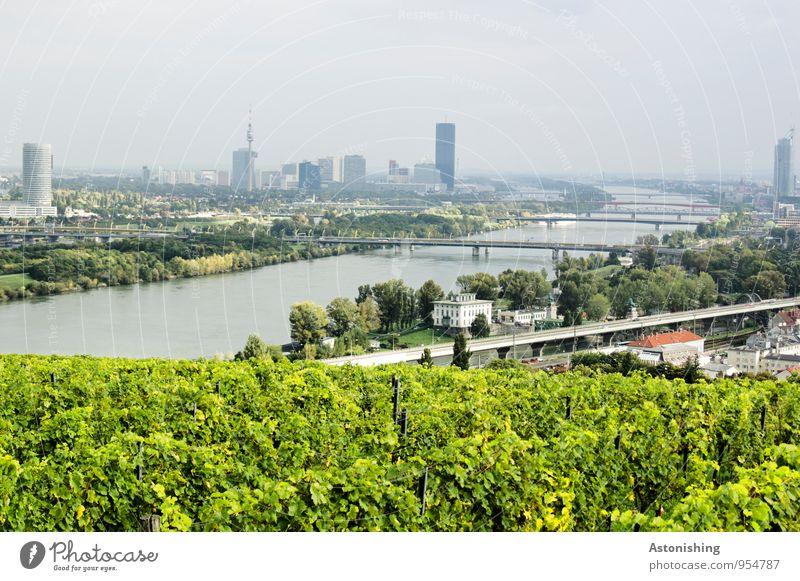 Donau in Wien Himmel Natur blau Stadt Pflanze grün Baum Landschaft Haus Umwelt Straße Wetter Verkehr Sträucher groß Schönes Wetter