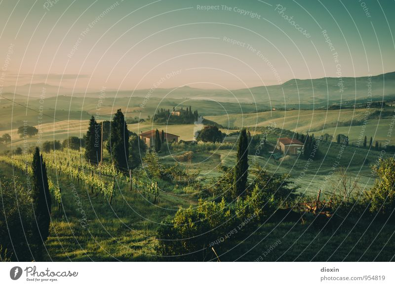 Tuscia {6} harmonisch Erholung ruhig Ferien & Urlaub & Reisen Tourismus Ausflug Ferne Sommer Sommerurlaub Umwelt Natur Landschaft Himmel Sonnenaufgang