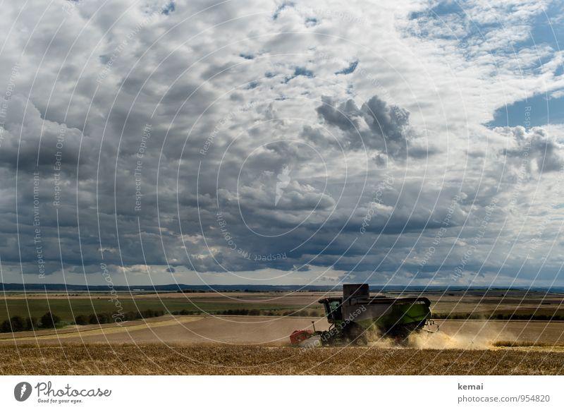 Wer Wind sät, wird Sturm ernten. Sommer Umwelt Landschaft Himmel Wolken Gewitterwolken Sonnenlicht Wetter Unwetter Nutzpflanze Feld fahren dunkel Ernte