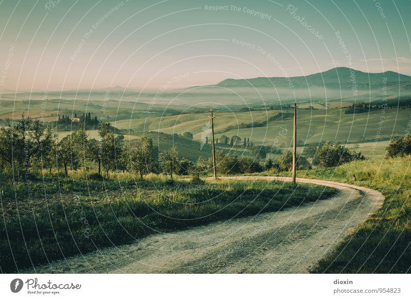 Tuscia {8} Himmel Natur Ferien & Urlaub & Reisen Pflanze Sommer Baum Erholung Landschaft ruhig Ferne Umwelt Wege & Pfade Feld Tourismus wandern Ausflug