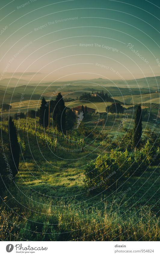 Tuscia {11} Natur Ferien & Urlaub & Reisen Pflanze Sommer Baum Landschaft ruhig Haus Ferne Umwelt Berge u. Gebirge Gras Freiheit Feld Tourismus Sträucher