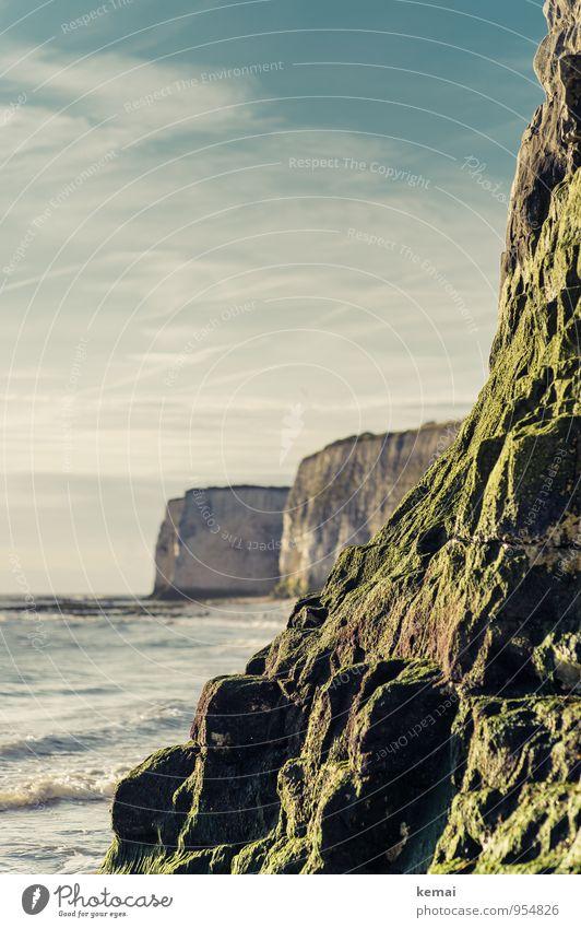 Cliffs Sommer Sommerurlaub Meer Wellen Umwelt Natur Landschaft Himmel Wolken Sonnenlicht Schönes Wetter Moos Hügel Felsen Küste England Kent Klippe frisch grün