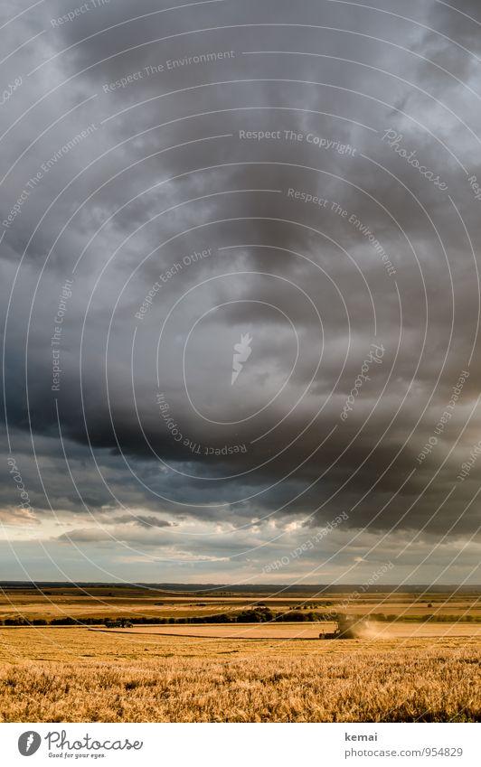 Make hay [while the sun shines] Sommer Landwirtschaft Forstwirtschaft Umwelt Natur Landschaft Wolken Gewitterwolken Sonnenlicht Wetter Unwetter Feld Fahrzeug