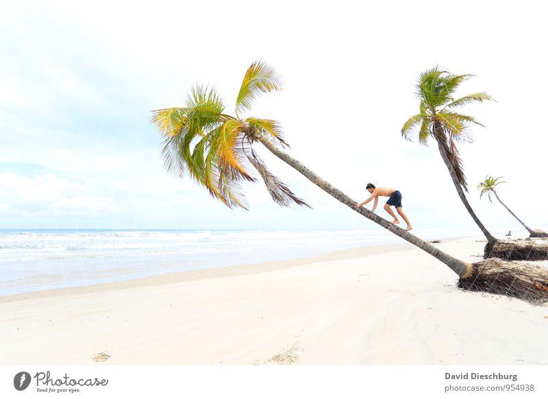 Aufstiegschance Mensch Himmel Ferien & Urlaub & Reisen Jugendliche blau grün weiß Wasser Sommer Baum Erholung Meer Landschaft Wolken Junger Mann Strand