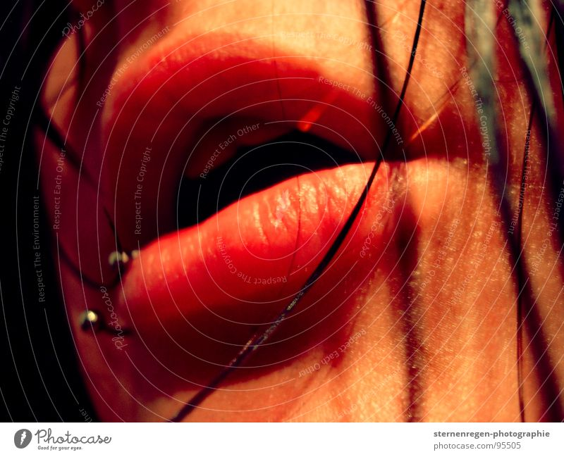 lips Wasser Angst nass Lippen Sehnsucht Lust Piercing Selbstportrait schwarzhaarig Frauengesicht Lippenpiercing Mund