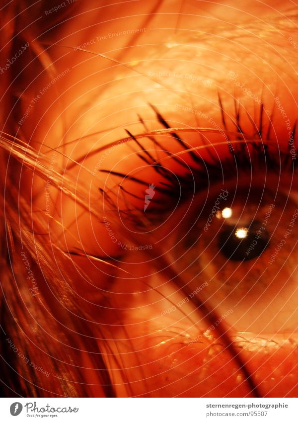 . Wasser Auge Angst nass Sehnsucht Spiegel Puppe Piercing Wimpern Selbstportrait Frauengesicht
