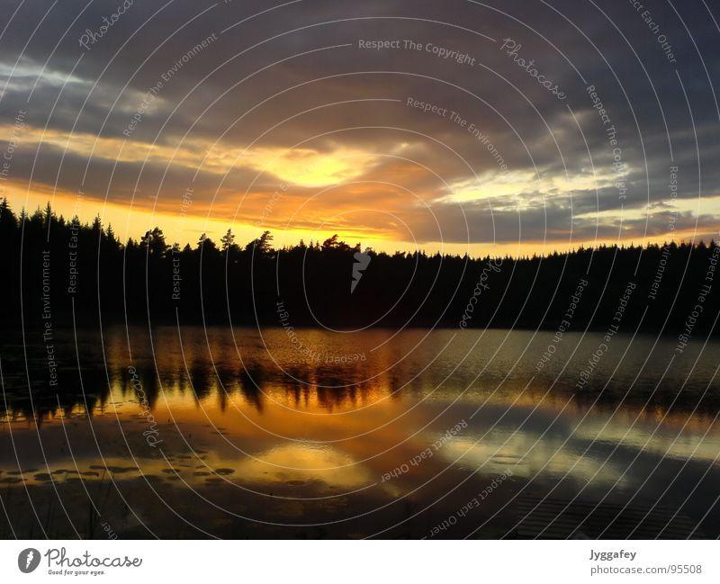 Serenity Lake Sonnenuntergang See Wolken Steg ruhig Außenaufnahme wandern Angeln Wasser Himmel Reflektion reflection water calm lake forest clouds orange blue