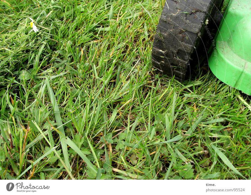 Gänseblümchenkiller Farbfoto Gedeckte Farben Außenaufnahme Tag Wiese grün chaotisch Rasenmäher Gartengeräte fliehende Frösche Zentrifugalhraft rasenmähen Statue