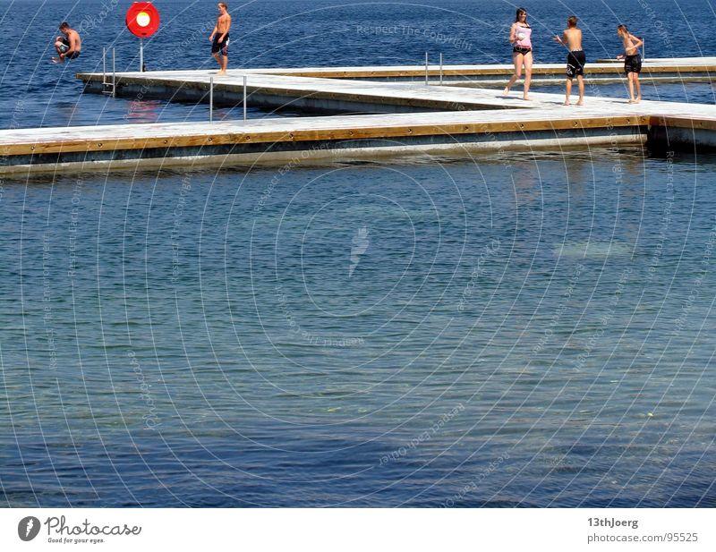 Badeanlage See Kulkwitzer See Leipzig Sommer Steg springen Fröhlichkeit Spielen Wege & Pfade Wellen Ferien & Urlaub & Reisen Schwimmen & Baden frisch
