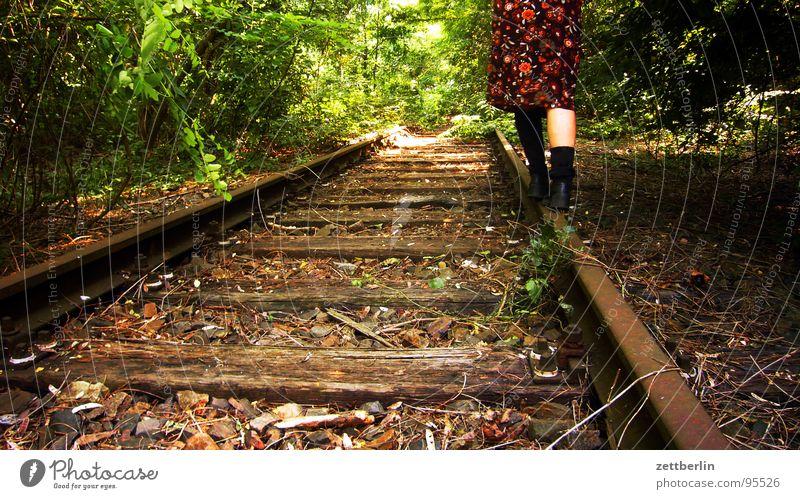 Balance Zufriedenheit Gleichgewicht Gleise rangieren stilllegen Wald Sträucher Park Baum Waldspaziergang wandern geheimnisvoll gefährlich Überfall Dieb Sommer