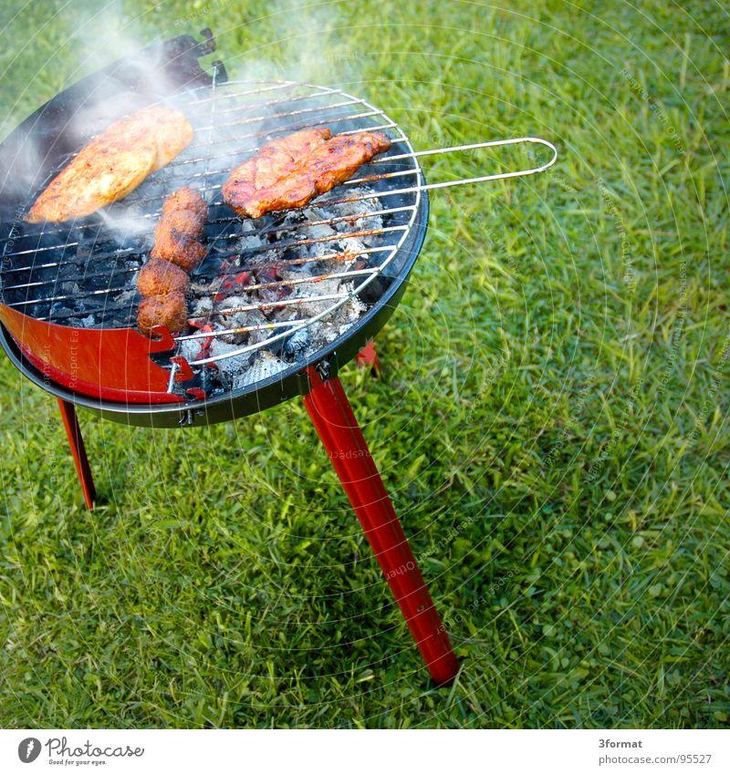 grill02 Picknick Grillen Bratwurst Sommer Ferien & Urlaub & Reisen Freizeit & Hobby Sonntag Feiertag Vatertag Nachmittag Mittag Wiese grün Fleisch heiß Glut
