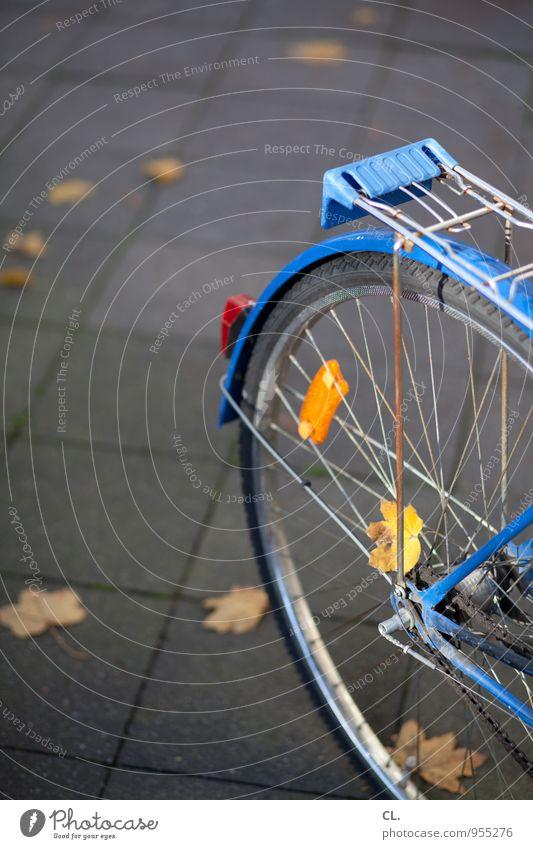 rund ums rad Freizeit & Hobby Fahrradfahren Herbst Blatt Verkehr Verkehrsmittel Verkehrswege Straßenverkehr Wege & Pfade Bürgersteig Fahrradsattel Fahrradreifen