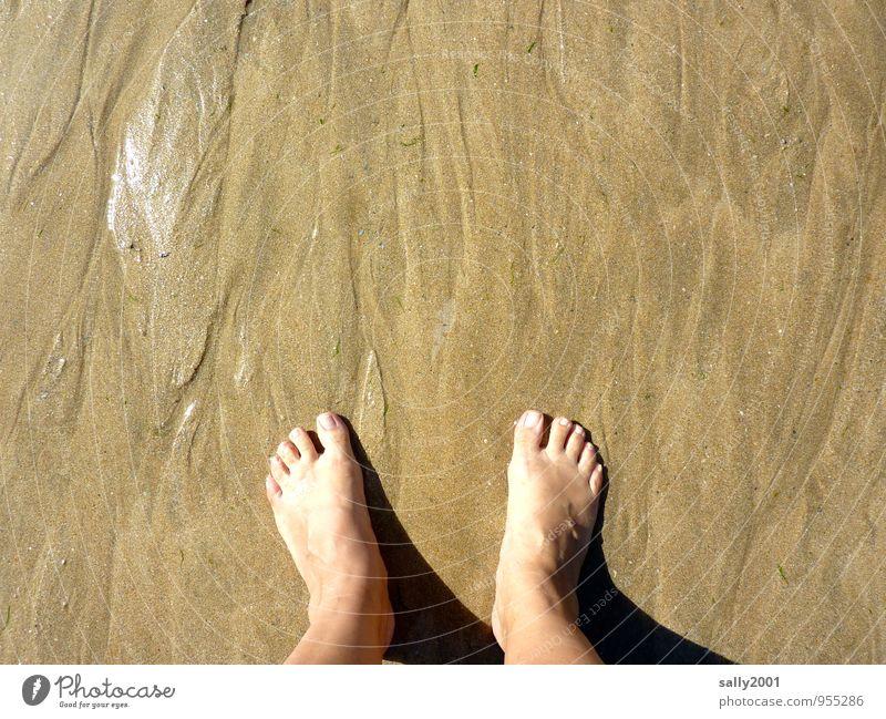 Entfaltungsmöglichkeiten | für Zehen Mensch Ferien & Urlaub & Reisen Erholung Freude Strand Erwachsene feminin Glück Gesundheit Freiheit Schwimmen & Baden Sand