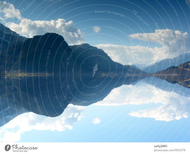 still ruht der See... Natur Landschaft Himmel Wolken Frühling Schönes Wetter Wald Alpen Berge u. Gebirge Seeufer außergewöhnlich fantastisch blau Glück