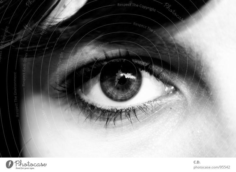 Auge Frau Rostock zentral Pupille Haarsträhne Wimpern Schminke schwarz weiß grau Trauer Optiker Schwarzweißfoto Jugendliche Gefühle Photoshop CS2 Gina