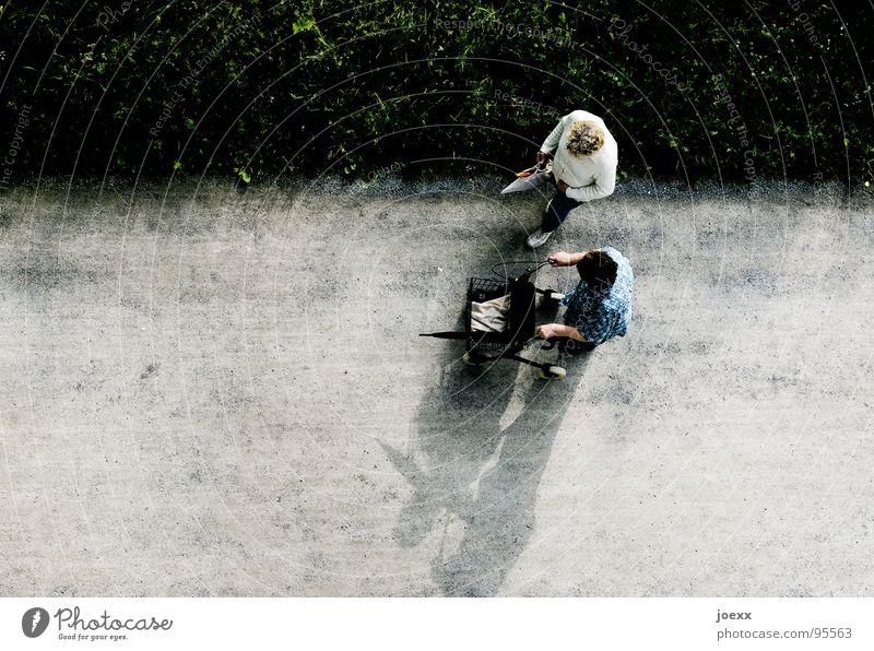 Absicht II Mensch Frau alt Freude Einsamkeit Erwachsene sprechen Senior Wege & Pfade Bewegung Gras Traurigkeit Zusammensein gehen Ausflug stehen