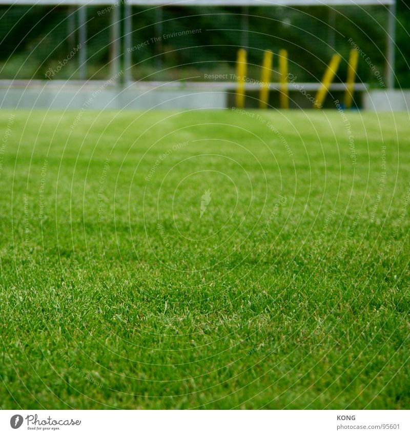 gesperrter platz grün Wiese Sport Spielen Gras Energiewirtschaft Rasen Spielfeld Tiefenschärfe Ballsport Cottbus Sportplatz Grünfläche
