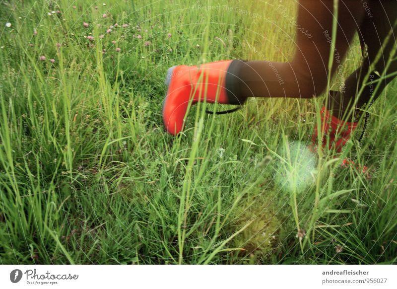 Maigirls. feminin Junge Frau Jugendliche 1 Mensch 18-30 Jahre Erwachsene Natur Pflanze Tier Sträucher laufen Gummistiefel Strumpfhose rot Kontrast Lebensfreude