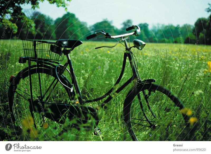 ....aufgebockt grün Ferien & Urlaub & Reisen Freude Wiese Park Fahrrad Pause Romantik Siebziger Jahre Sechziger Jahre Niederlande Fahrradtour Motorradfahrer