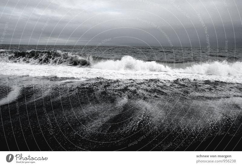 Wasserfluten Umwelt Natur Landschaft Urelemente Wolkenloser Himmel Klima Wind Sturm Wellen Küste Nordsee Ostsee Meer Insel Island Gefühle Kraft Willensstärke
