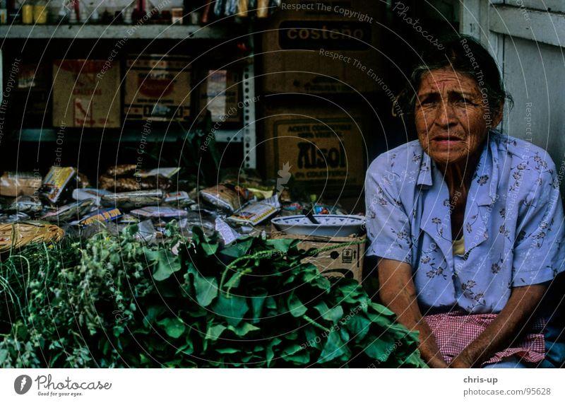 Kräuter Frau 2 Peru Lima Senior Kräuter & Gewürze Südamerika Amerika Markthändler Marktstand Landwirt Ferien & Urlaub & Reisen Arbeit & Erwerbstätigkeit Hemd