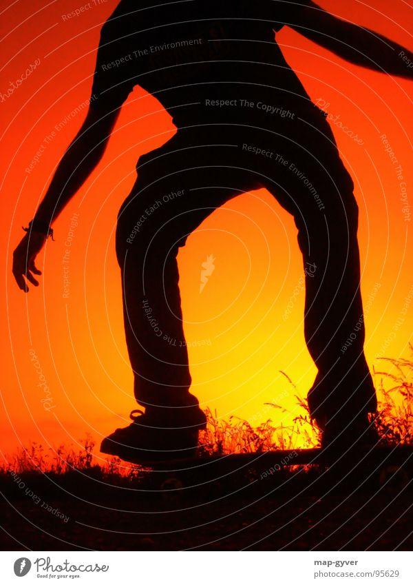friday night skateboarding Freizeit & Hobby Sport Coolness Skateboarding Sonnenuntergang sun evening Farbfoto Textfreiraum unten Hintergrund neutral Abend