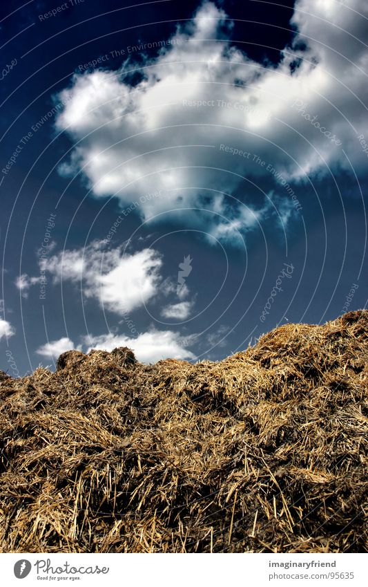 silver Himmel Wolken Landschaft Feld Länder Landwirtschaft Amerika Müll Misthaufen Düngung
