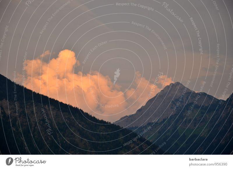 Abendwolken in den Bergen Umwelt Natur Landschaft Urelemente Himmel Wolken Sonne Sommer Alpen Berge u. Gebirge genießen leuchten dunkel hell hoch Stimmung