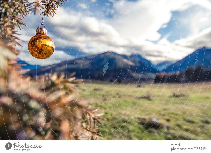 Wer will schon grüne Weihnachten! Himmel Natur Weihnachten & Advent Landschaft ruhig Wolken Berge u. Gebirge Herbst Wiese außergewöhnlich Feste & Feiern gold