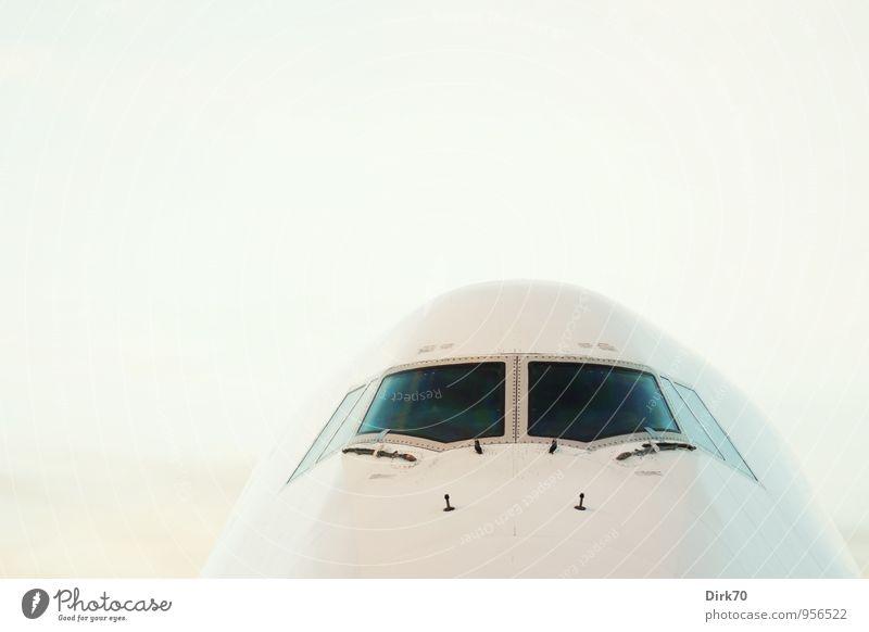 """""""300!"""" Ferien & Urlaub & Reisen Tourismus Ferne Luftverkehr Technik & Technologie Fortschritt Zukunft High-Tech Industrie Schönes Wetter Flughafen Flugzeug"""