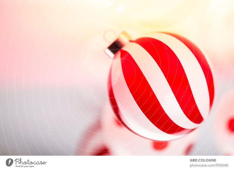 #15112014_0013 schön Weihnachten & Advent weiß rot Innenarchitektur Feste & Feiern Stimmung glänzend Wohnung Dekoration & Verzierung Design modern Glas frisch