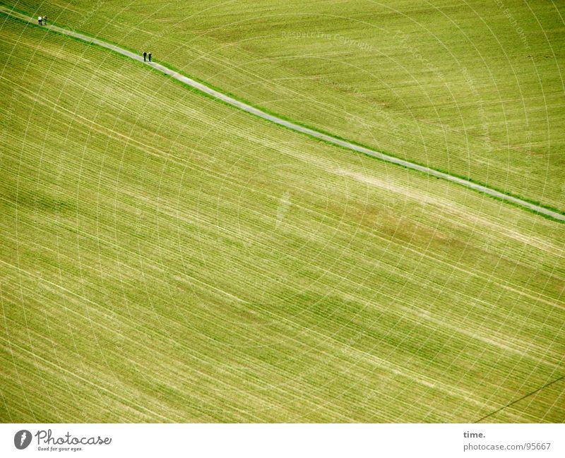 Bäuerliche Arithmetik (mit Bauer) grün Straße Wege & Pfade Feld Wellen Ernte sanft Furche fließen spät entgegengesetzt