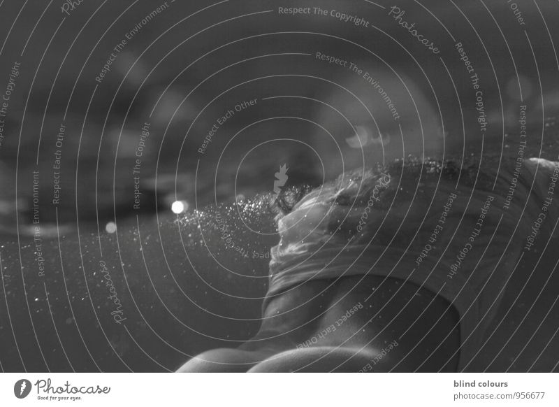 libertin Frau nackt Weiblicher Akt Meer Erotik Schwimmen & Baden Kunst Zufriedenheit ästhetisch Im Wasser treiben Gesäß Meerestiefe Wasseroberfläche Voyeurismus