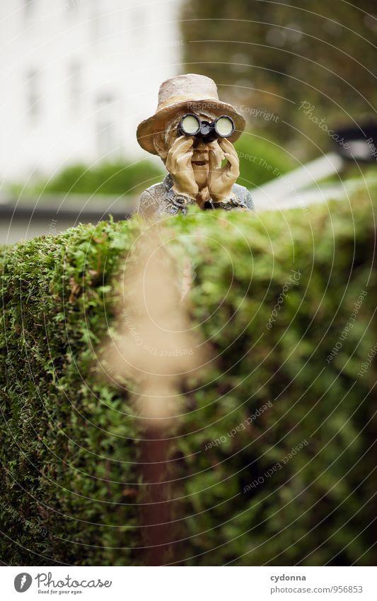 Die lieben Nachbarn Lifestyle Freizeit & Hobby Abenteuer Ferne Sightseeing Mensch Senior Leben Garten Beratung entdecken Gesellschaft (Soziologie) Idylle
