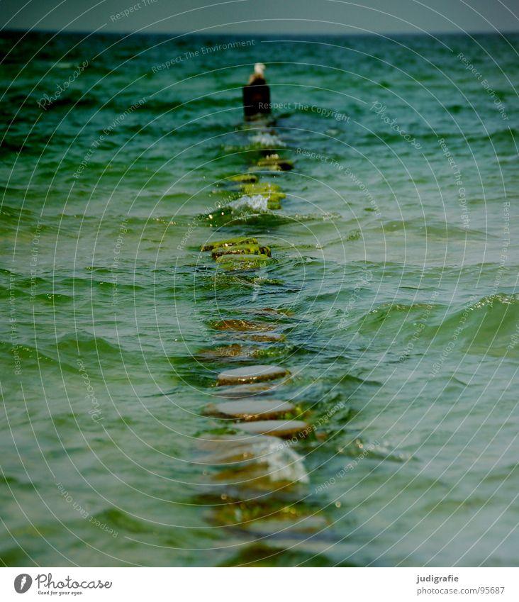 Küste Gischt Wellen Meer Kühlung Ferien & Urlaub & Reisen kalt Holz Möwe nass grün Horizont Strand Wasser spritzen Wassertropfen Ostsee Buhne Pfosten Himmel