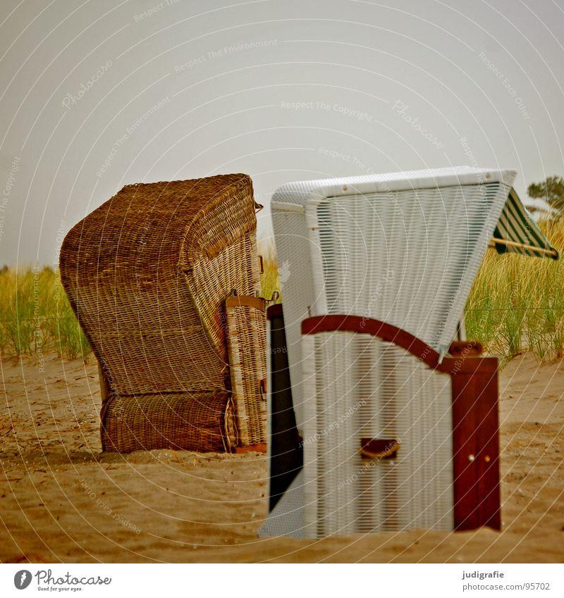 Strandkörbe Meer Fischland Darß Prerow Strandkorb Ferien & Urlaub & Reisen 2 Korb weiß braun grün gelb Farbe Küste Sand Ostsee Erholung Stranddüne