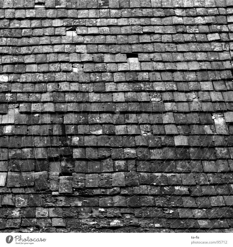 Dach alt Haus Gebäude Dach kaputt Vergänglichkeit Dorf verfallen Backstein Handwerk gemalt