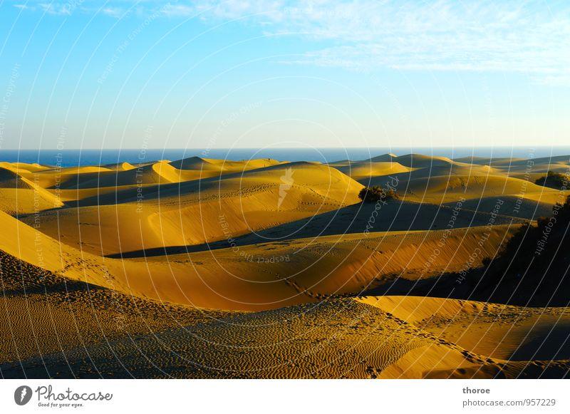 Dünen Natur Landschaft Urelemente Sand Luft Wasser Himmel Horizont Meer Wüste Spanien Gran Canaria Kanaren Stimmung Warmherzigkeit Romantik Gelassenheit ruhig