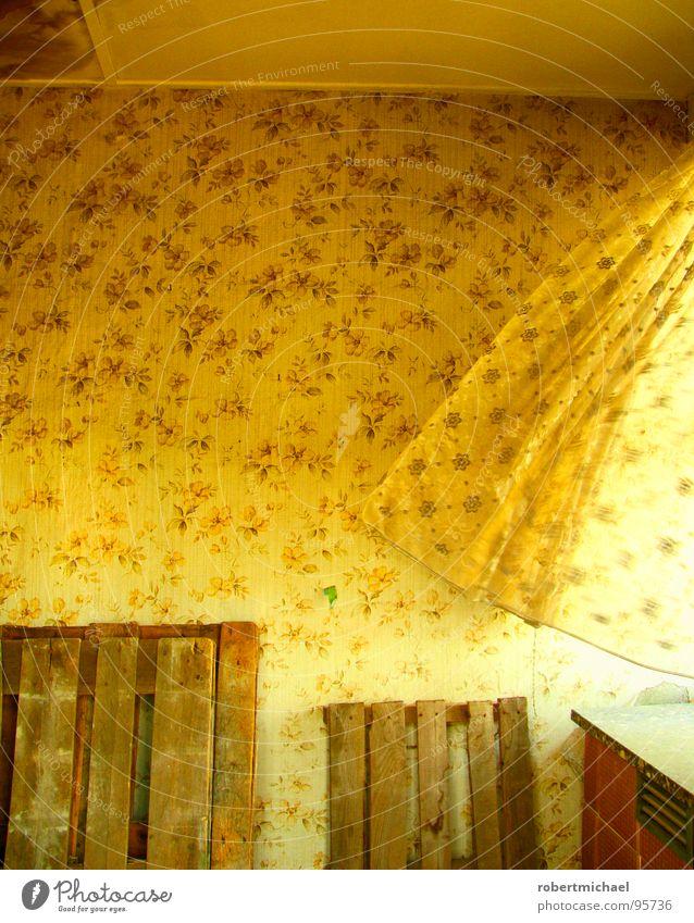 wenn der wind die paletten streift. retro Tapete Blume Blumenmuster Wand tapezieren Gardine Vorhang Luft Windzug Fenster ruhig leer Menschenleer Paletten Holz