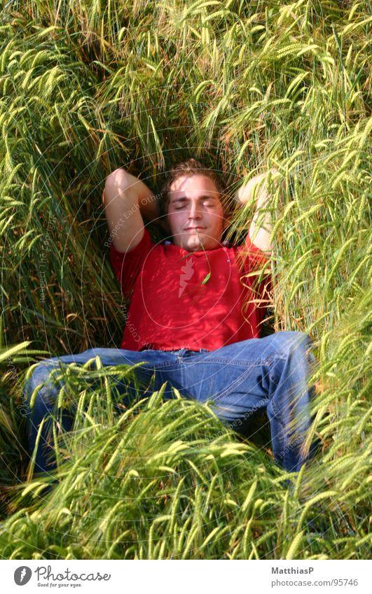 Schlafen im Gerstenfeld Mann Natur blau rot Sommer Freude Blume ruhig Erholung Leben Freiheit Berge u. Gebirge Gras Zufriedenheit Feld Wind