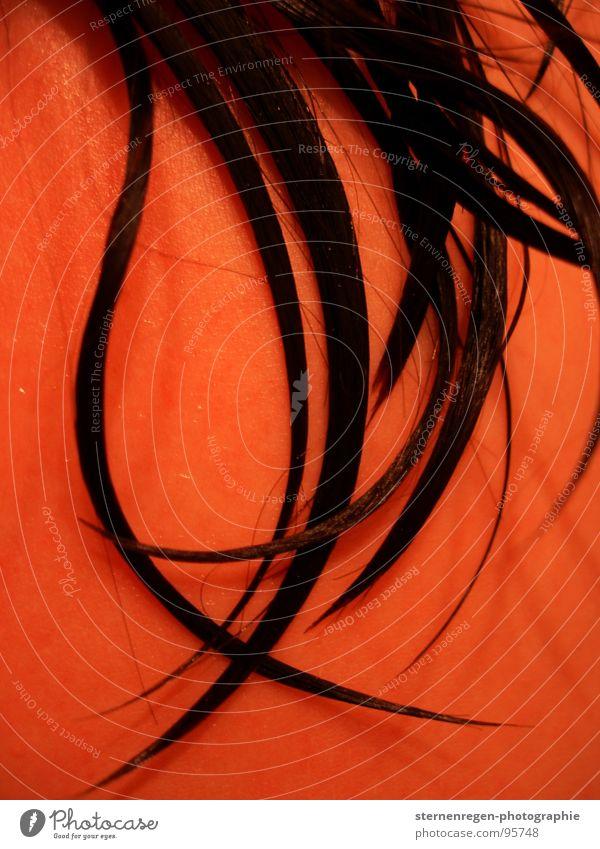 wet schwarzhaarig nass Haarsträhne Nackte Haut Erfrischung Makroaufnahme Nahaufnahme nasse haare Wasser Haare & Frisuren Wassertropfen