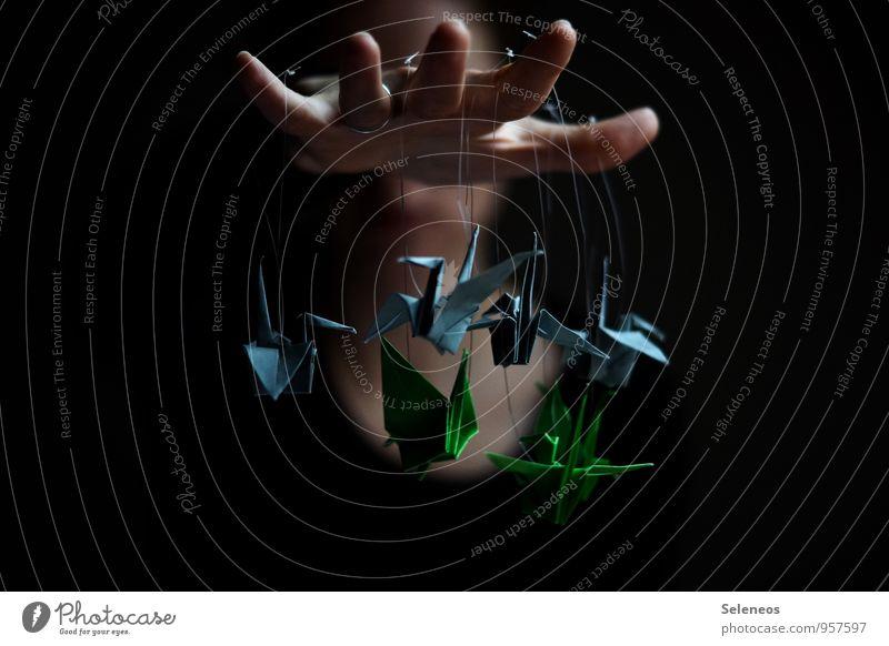 Alter Falter Erholung ruhig Freizeit & Hobby Basteln Origami klein Hand Finger Farbfoto Innenaufnahme Schatten Kontrast Schwache Tiefenschärfe