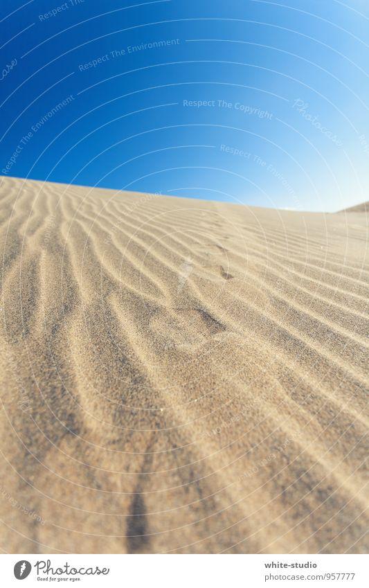 Vom Winde verweht Sand heiß Fußspur Stranddüne Wüste Sandverwehung Spuren spurenlesen Furche Sandstrand Dürre trocken Sommerurlaub Warmherzigkeit