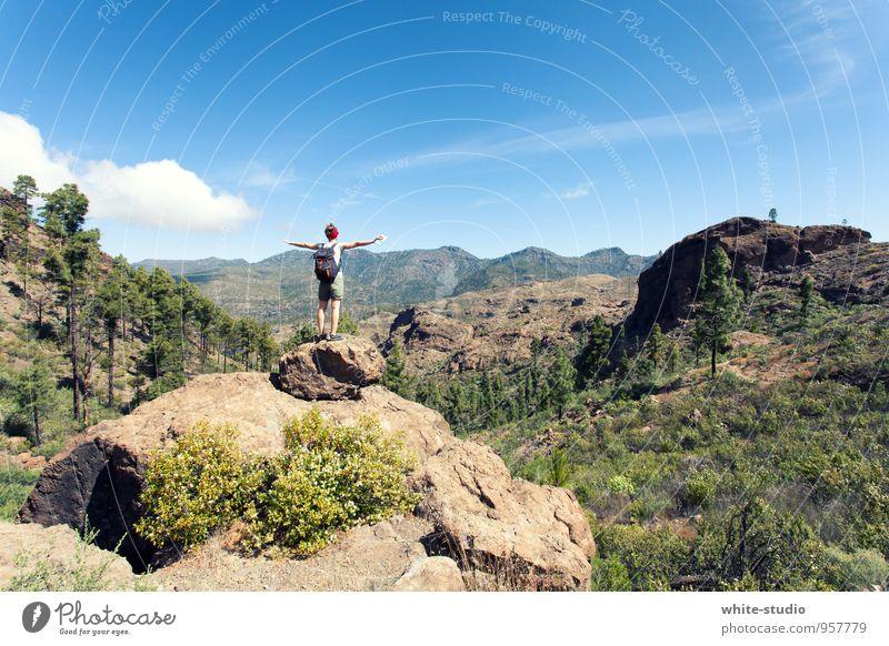 Ultimative Freiheit feminin 1 Mensch Natur Himmel Sommer Berge u. Gebirge wandern frei Unendlichkeit Glück Lebensfreude authentisch Erholung