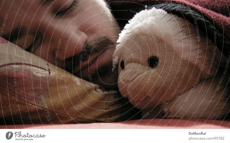 Beischlaf beim Schaf! Farbfoto Innenaufnahme Nahaufnahme Detailaufnahme Kunstlicht Porträt Tierporträt geschlossene Augen Gesicht Bett Schlafzimmer Mann