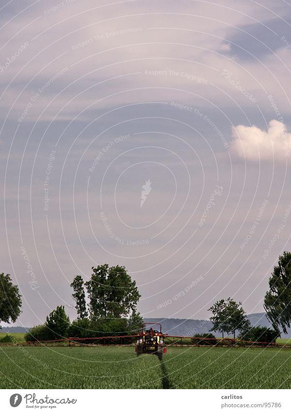 Grün lackiert Ernährung Frühling Feld Horizont Getreide Landwirtschaft Korn Ackerbau Weizen Traktor Aussaat sprühen Gerste Roggen Spirituosen
