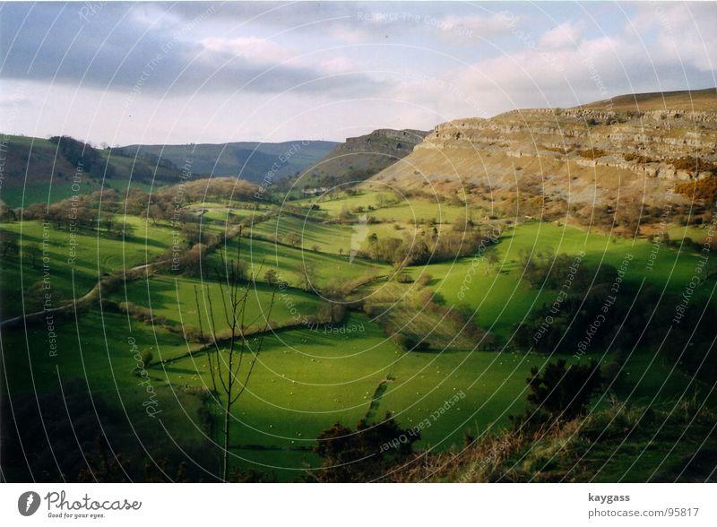 Fruehling in Wales Natur grün Frühling Denken Landschaft Idylle