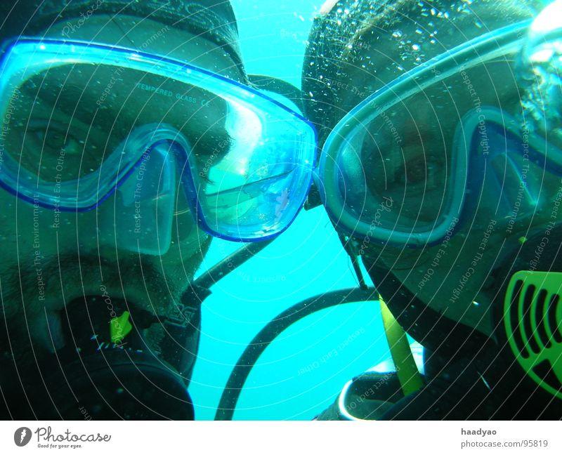 Untergetaucht Taucher Mann Frau Meer Atlantik Ferien & Urlaub & Reisen türkis Zusammensein Unterwasseraufnahme Freude Wassersport Klarheit Freiheit Erwachsene