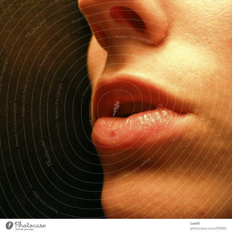 Flüster mir was... Frau rot schwarz Mund Haut rosa Nase Lippen bleich Kinn Nasenloch
