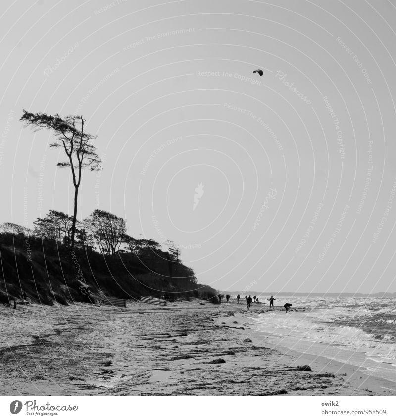 Spielplatz Mensch Himmel Natur Ferien & Urlaub & Reisen Baum Landschaft Freude Strand Ferne Umwelt Gefühle Küste Freiheit Menschengruppe Horizont Wetter